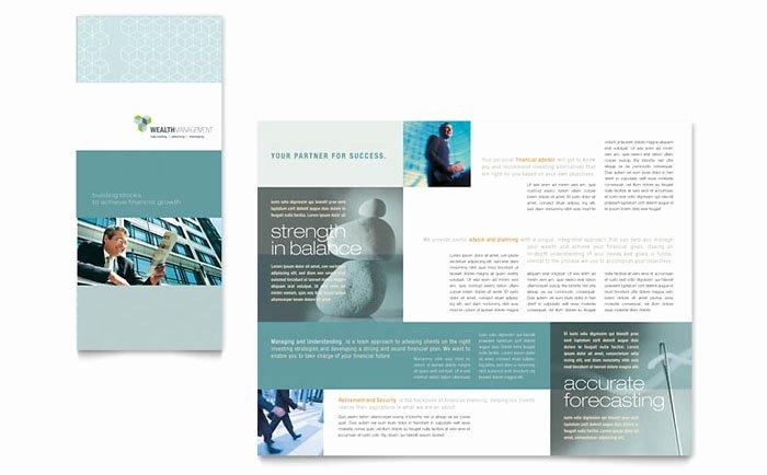 Wealth Management Services Tri Fold Brochure Template Design