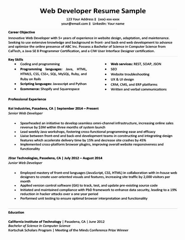 Web Developer Resume Sample & Writing Tips