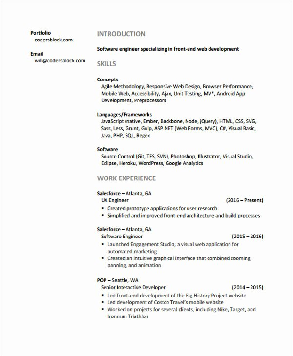 Web Developer Resumes 9 Free Word Pdf format Download