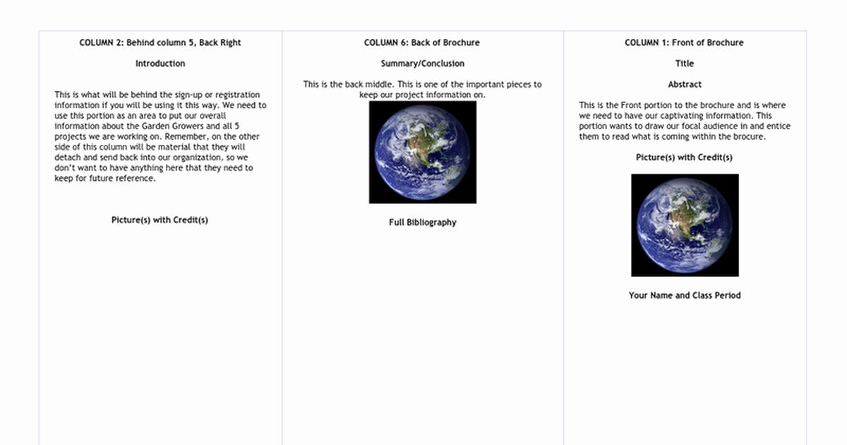 Web Image Gallery Brochure Templates Google Docs Example