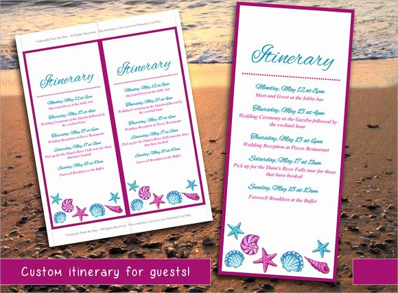 Wedding Itinerary Template 8 Download Documents In Pdf