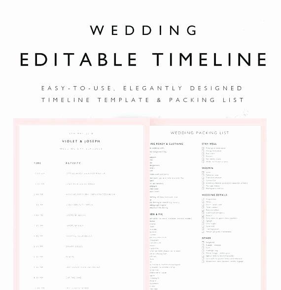 Wedding Schedule Template Excel Wedding Bud Planner