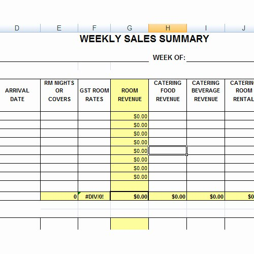 Weekly Sales Report format V M D