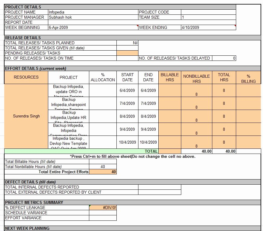 Weekly Status Report Template Professional Business