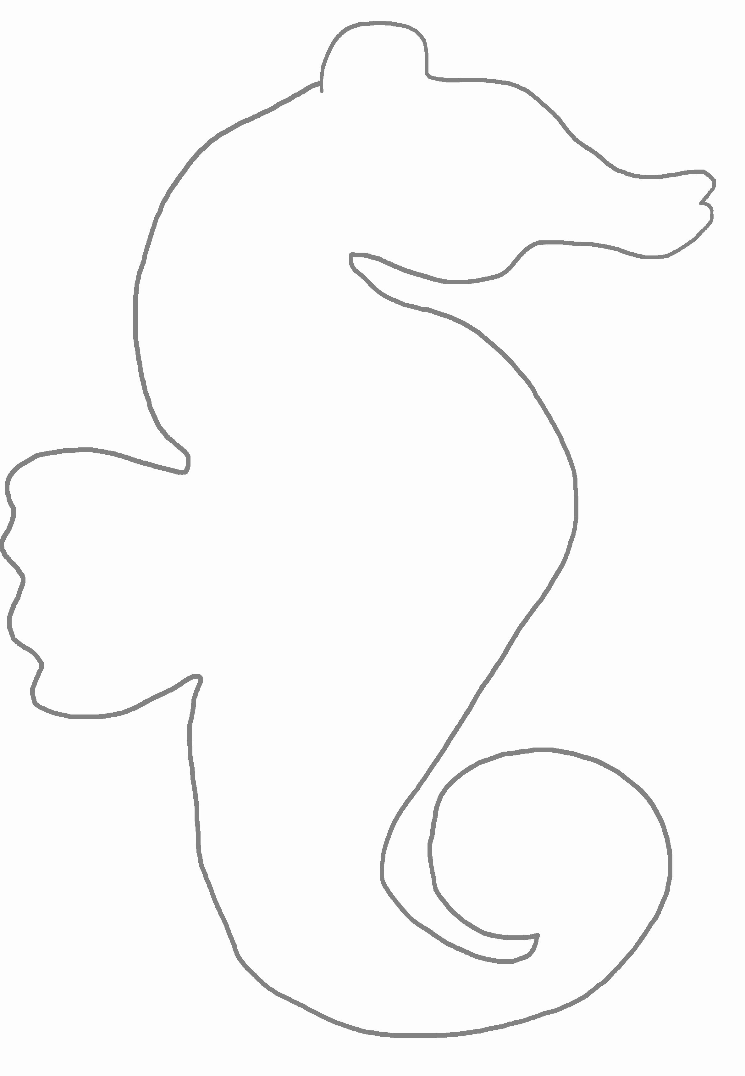 weird printable seahorse template 65 sea creature templates crafts colouring pages
