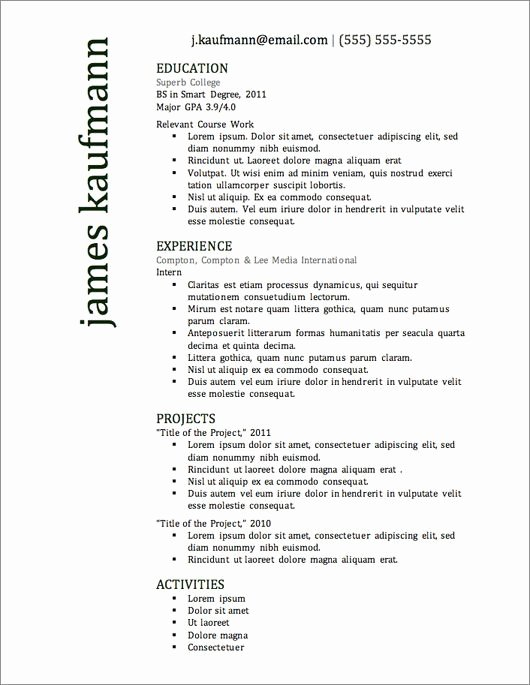 What is A Good Resume Title Best 41 Best Professional
