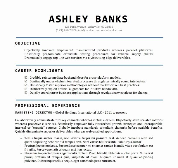 Word Document Resume Templates