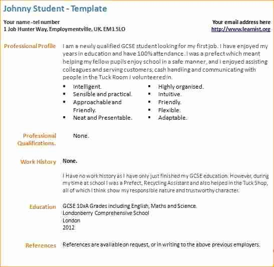 Writing Your First Resume Example How to Write A thesis
